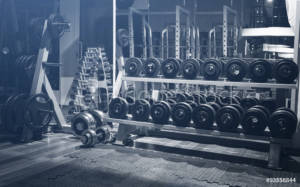 Barbells and weights at a gym